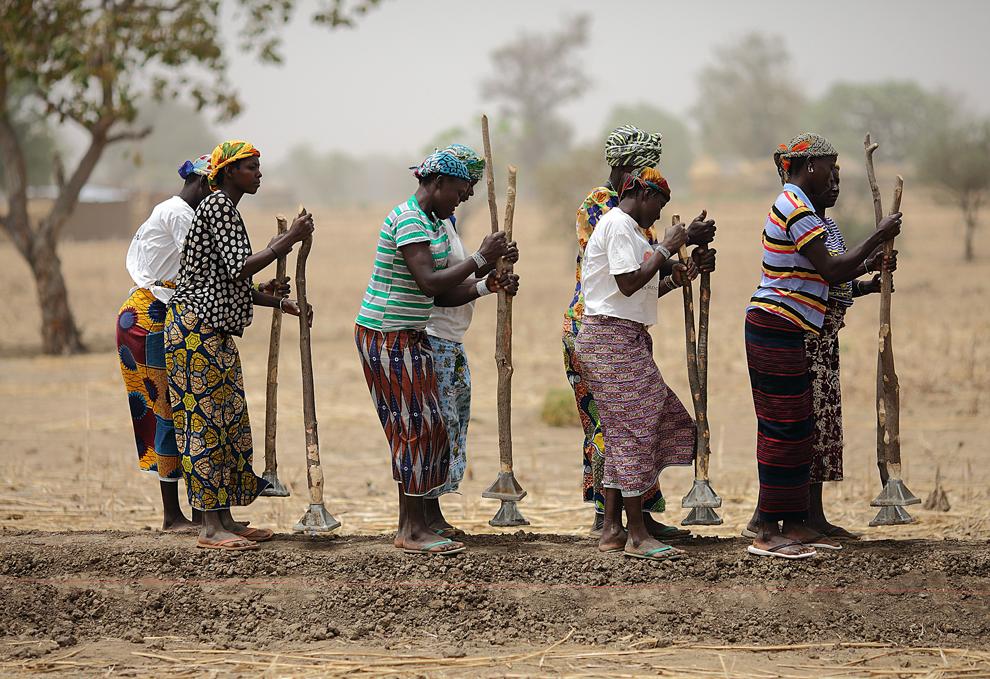 Femei lucrează pe un câmp, în cadrul unui program gestionat de organizaţia non-guvernamentală franceză Acţiune Împotriva Foamei, pentru a construi diguri de reţinere a apei, în apropiere de Diapaga, la 300 km nord-est de Ouagadougou, în Burkina Faso, miercuri, 21 martie 2012.