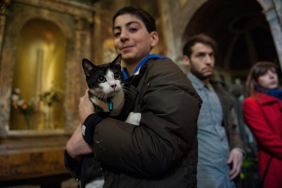 Un bărbat îşi ţine în braţe pisica, în timpul slujbei de binecuvântare a animalelor, la biserica Sant'Eusebio, din Roma, Italia, duminică, 19 ianuarie 2014.