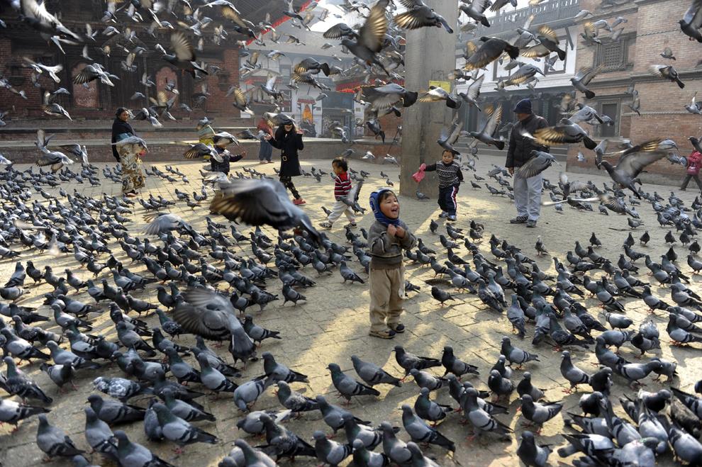 Copii hrănesc porumbei în piaţa Durbar din Kathmandu, Nepal, joi, 9 ianuarie 2014.
