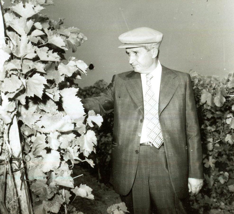 Vizita de lucru a preşedintelui Nicolae Ceauşescu, a altor conducători de partid şi de stat în judeţul Vrancea. La I.A.S. Odobeşti.(6.IX.1978).