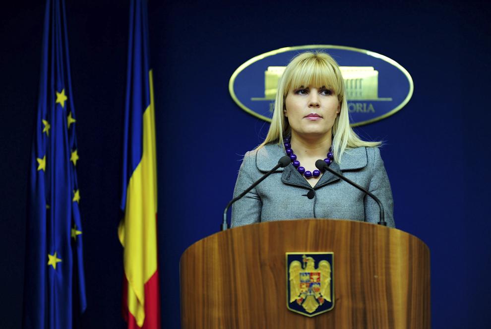 Ministrul Turismului, Elena Udrea, face o declaratie de presa, dupa intrevederea cu proprietarul Castelului Bran, Dominic de Habsburg, la Palatul Victoria, in Bucuresti, sambata, 31 ianuarie 2009.