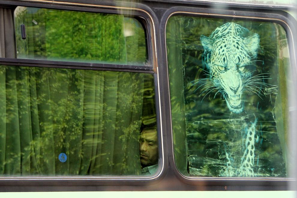 Un bărbat se odihneşte într-un autobuz. În mijloacele de transport în comun, bărbaţii şi femeile călătoresc separat, excepţie făcând turiştii.