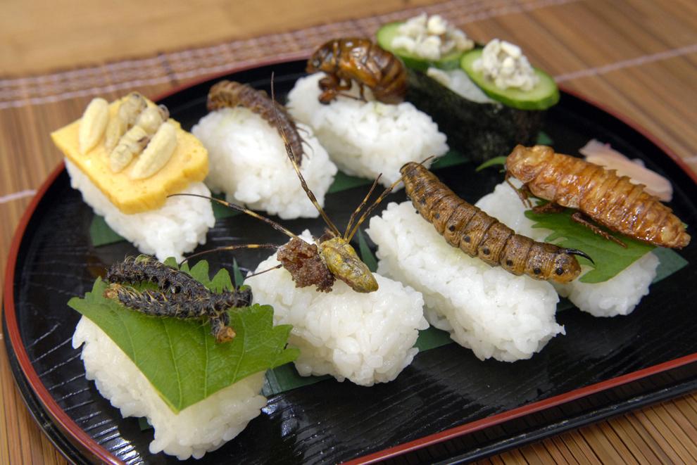 O selecţie de sushi cu diverse insecte (de la stânga la dreapta spate: larvă de omidă sakura, păianjen joro, larvă de molie privet-hawk, gândac de Madagascar, larvă de viespe asiatică, larvă de dobsonfly, cicadă japoneză, larvă de furnică de copac verde) este prezentată în Tokyo, Japonia, marţi, 28 octombrie 2008.