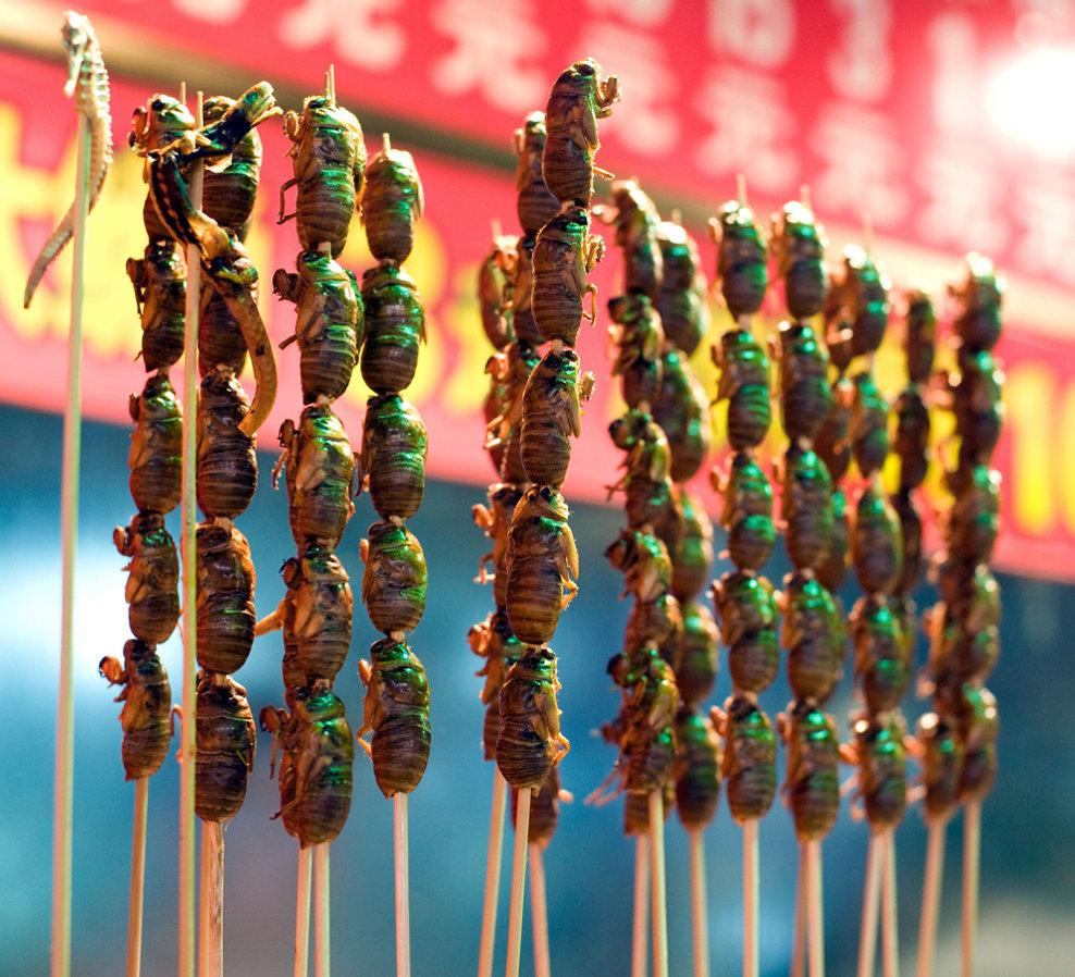 Mai multe insecte gătite sunt expuse spre vânzare într-o piaţă stradală din apropierea străzii Wangfujing, în Beijing, China, marţi, 12 octombrie 2010.