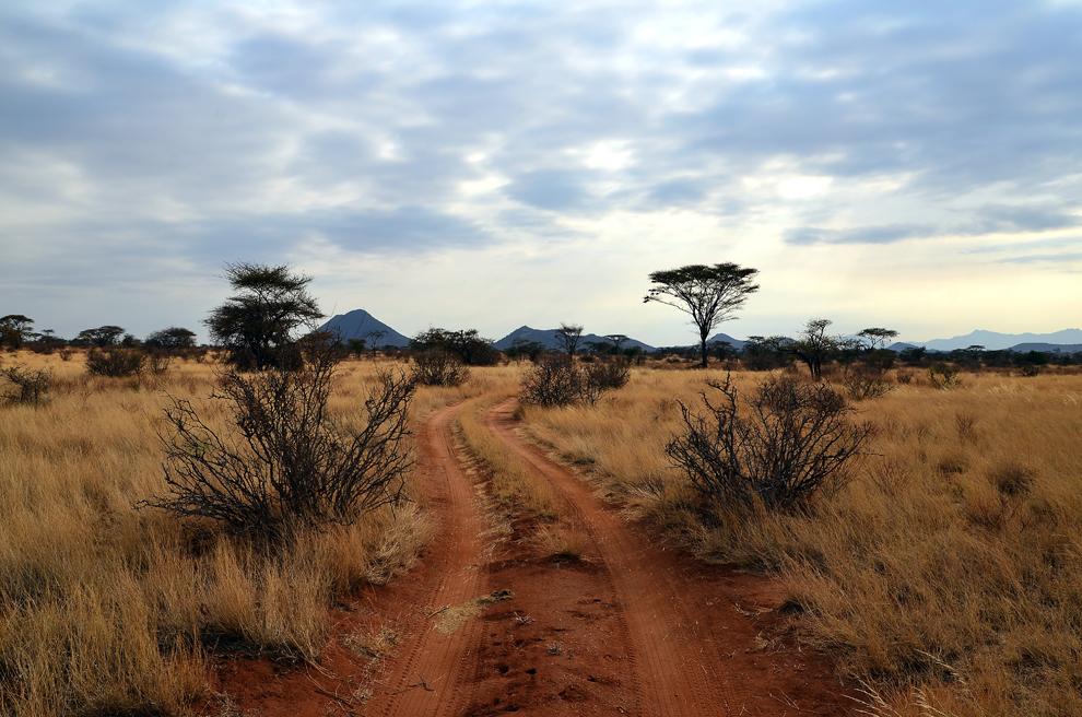 Peisaj din rezervaţia Samburu, Kenya, duminică, 21 iulie 2013.