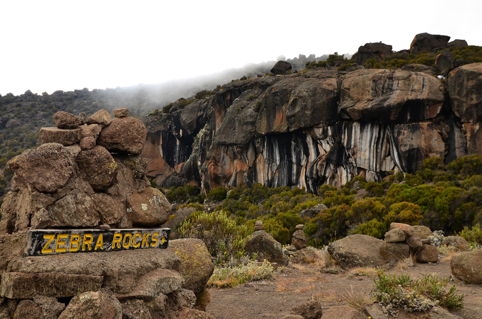 Zebra Rocks (4100m), pe traseul către Uhuru Peak, muntele Kilimanjaro, Tanzania, miercuri, 10 iulie 2013.