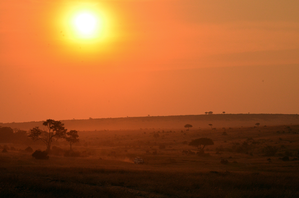 Apus în savană, rezervaţia Masai Mara, Kenya, luni, 15 iulie 2013.