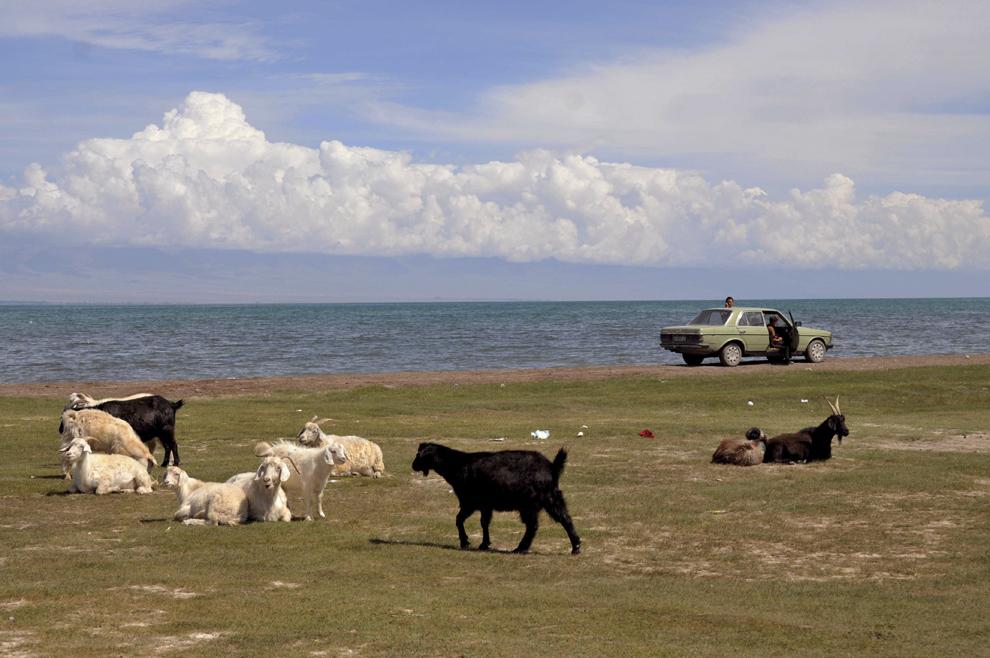 Imagine de pe malul lacului Yssik Kul, în Kârgâzstan, august 2013.