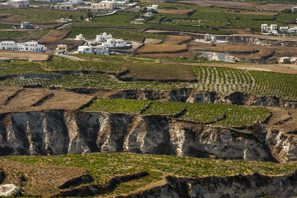 Parcele de teren cultivat, pe aridul sol al insulei Santorini.
