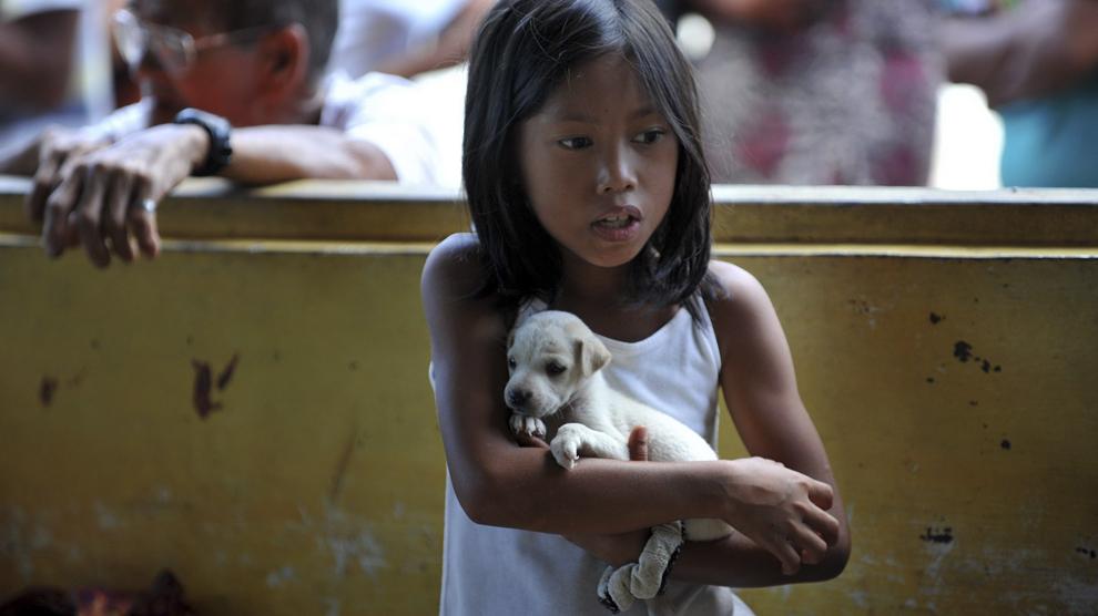 O fetiţă ţine în braţe un căţel, în timp ce activişti VIER PFOTEN vaccinează câini şi distribuie furaje pentru animale la ferma localnicilor din Bintuan Island, Filipine, 1 decembrie 2013. Fundaţia VIER PFOTEN a demarat un proiect pentru a ajuta animalele domestice şi din ferme, după ce ciclonul Haiyan a lovit insulele din Pacific.