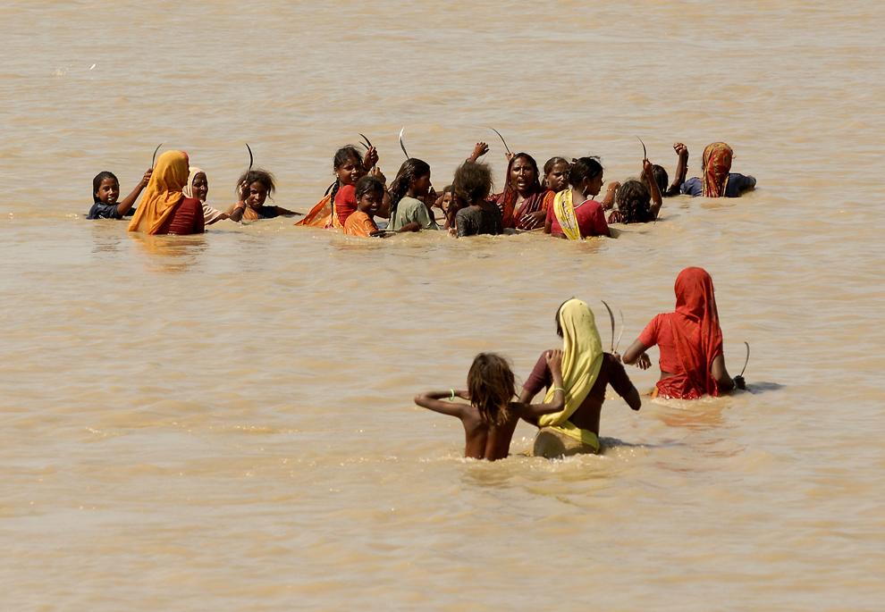Femei care muncesc cu ziua traversează apa adunată în urma inundaţiilor musonice, pentru a culege orez.