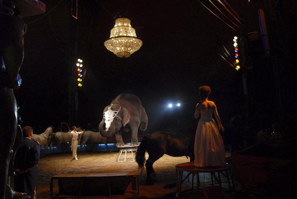 Artişti ai circului Magyar Nemzeti Cirkusz din Ungaria susţin un număr de dresură de elefant pe scena din Parcul Titan din Bucureşti, sâmbătă, 28 iunie 2008.