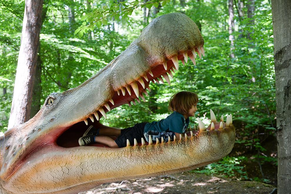 Un copil vizitează cel mai mare parc cu dinozauri din Europa, Dino Parc Râşnov, care se întinde pe o suprafaţă de un hectar şi jumătate, sâmbătă, 13 iunie 2015.