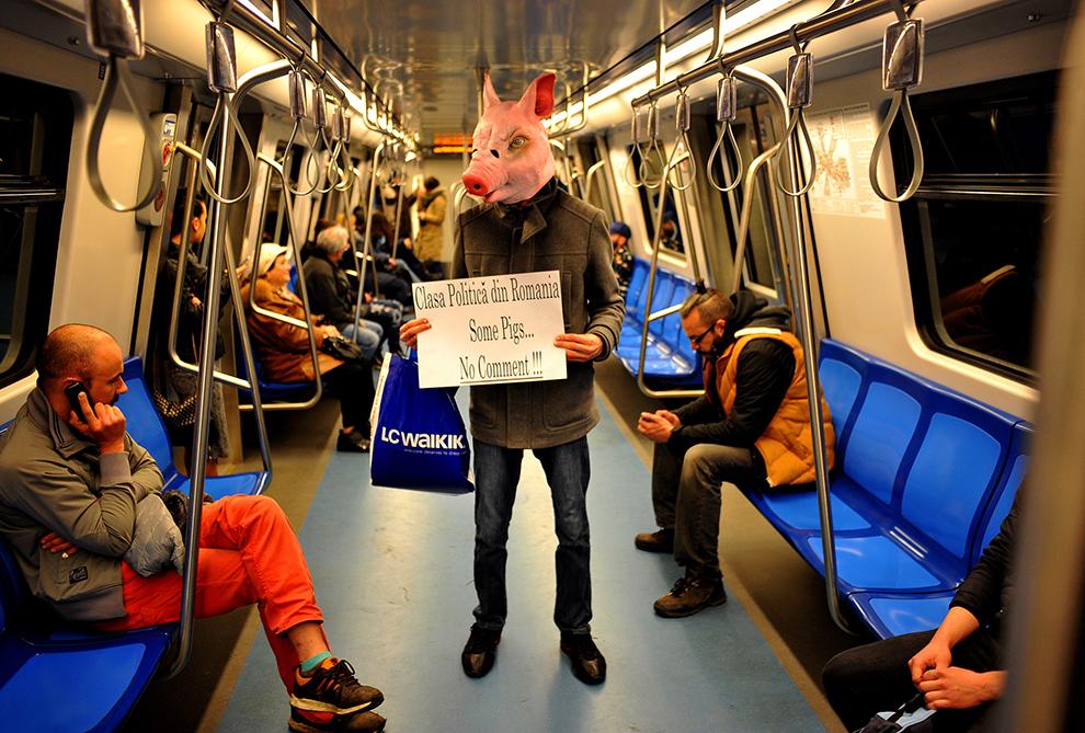 Un bărbat purtând o mască în formă de cap de porc, arată o coală de hârtie în semn de protest împotriva clasei politice din România, într-o garnitură de metrou, sâmbătă 8 Noiembrie 2015.