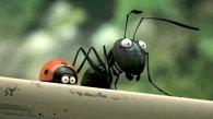 Minuscule / Minuscule - La vallée des fourmis perdues (Franţa-Belgia, 2013) - trailer