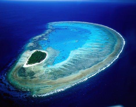 Insula Lady Musgrave, Marea Barieră de Corali, Australia