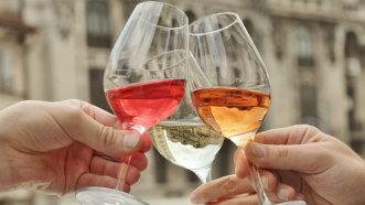 Peste 1.500 vizitatori şi 35 expozanţi la salonul de vinuri ReVino Bucharest Wine Fair