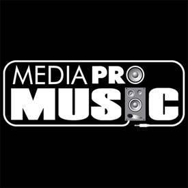 A 14-a ediţie a Premiilor Muzicale Radio România a venit cu numeroase premii pentru artistii MediaPro Music!