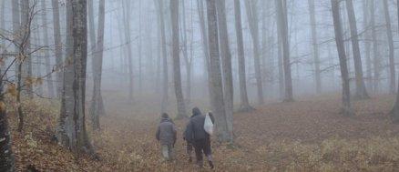 Meda sau Partea nu prea fericită a lucrurilor - Galerie foto film