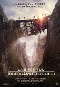 LABIRINTUL: INCERCARILE FOCULUI - digital