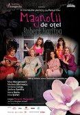 Magnolii de otel - Piesa de teatru