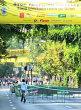 Via Sport 2014 pe Kiseleff