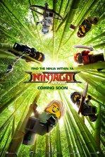 Lego Ninjago Filmul - 3D