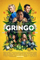 Gringo: Amator in misiune