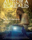 Aurora Borealis: Luminile Nordului