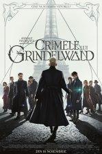 Animale Fantastice: Crimele lui Grindelwald - 3D