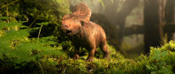 Walking with Dinosaurs - Galerie Foto
