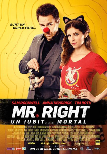 Mr. Right. Un iubit... mortal