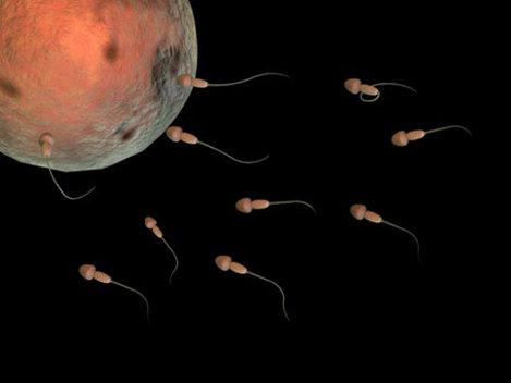 Ultrasunetele ar putea reprezenta urm�torul contraceptiv masculin