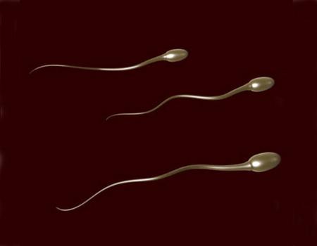 Sperma poate fi respinsa de organismele �pretentioase� ale femeilor