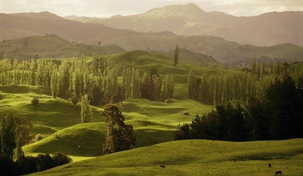 Spectaculoasa Noua Zeelanda in imagini (II)