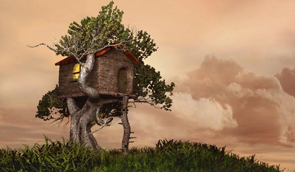 INEDIT! Casa din copac: noua destinatie pentru vacantele eco
