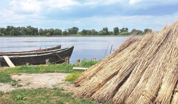 Magia unei clipe in Delta Dunarii (FOTO)