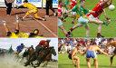 Bizara lume a sporturilor traditionale