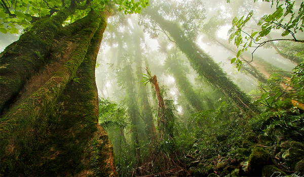 Zece locuri unde natura isi dezvaluie secretele