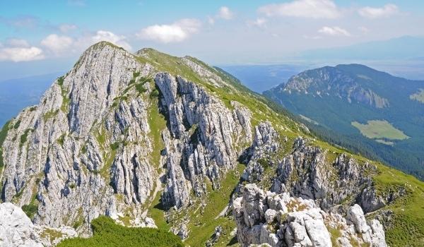 Piatra Craiului – Muntele florii fără seamăn