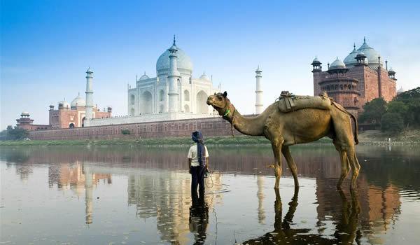 Cele mai frumoase 19 forturi şi palate ale Indiei