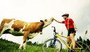 Sport, natură şi gastronomie în Ţinutul Mustului, Austria