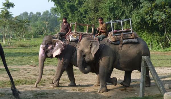 Nepal, la picioarele Himalayei. Episodul 4 – rafting, safari, parapantă sau ce altceva mai poţi să faci în Nepal