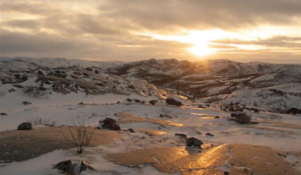 Tundra în 20 de ipostaze spectaculoase