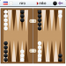 Skiller Backgammon