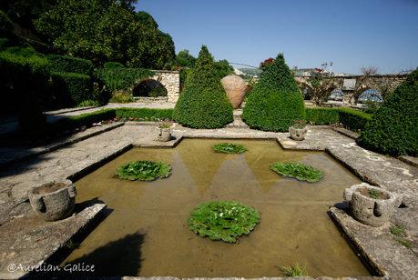 Gradina Botanica din curtea palatului Reginei Maria, Balchik