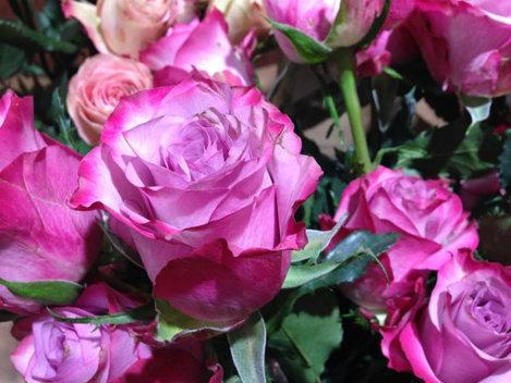 6 specii de flori comestibile