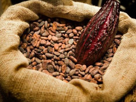 Vis cacao. Ce înseamnă când visezi cacao