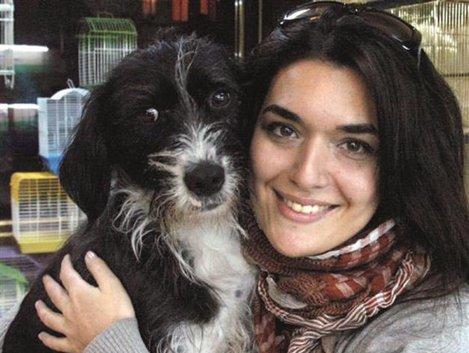 """Turcii fără  """"studii"""" nu vor mai avea voie să aibă animale de companie"""