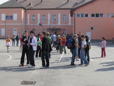 Perlele elevilor la testarea nationala 2011